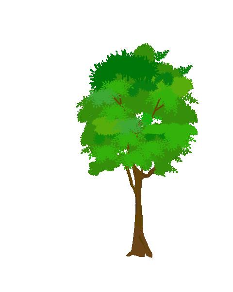 街路樹のイラスト