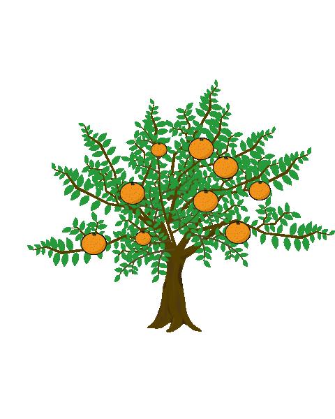 みかんの木のイラスト