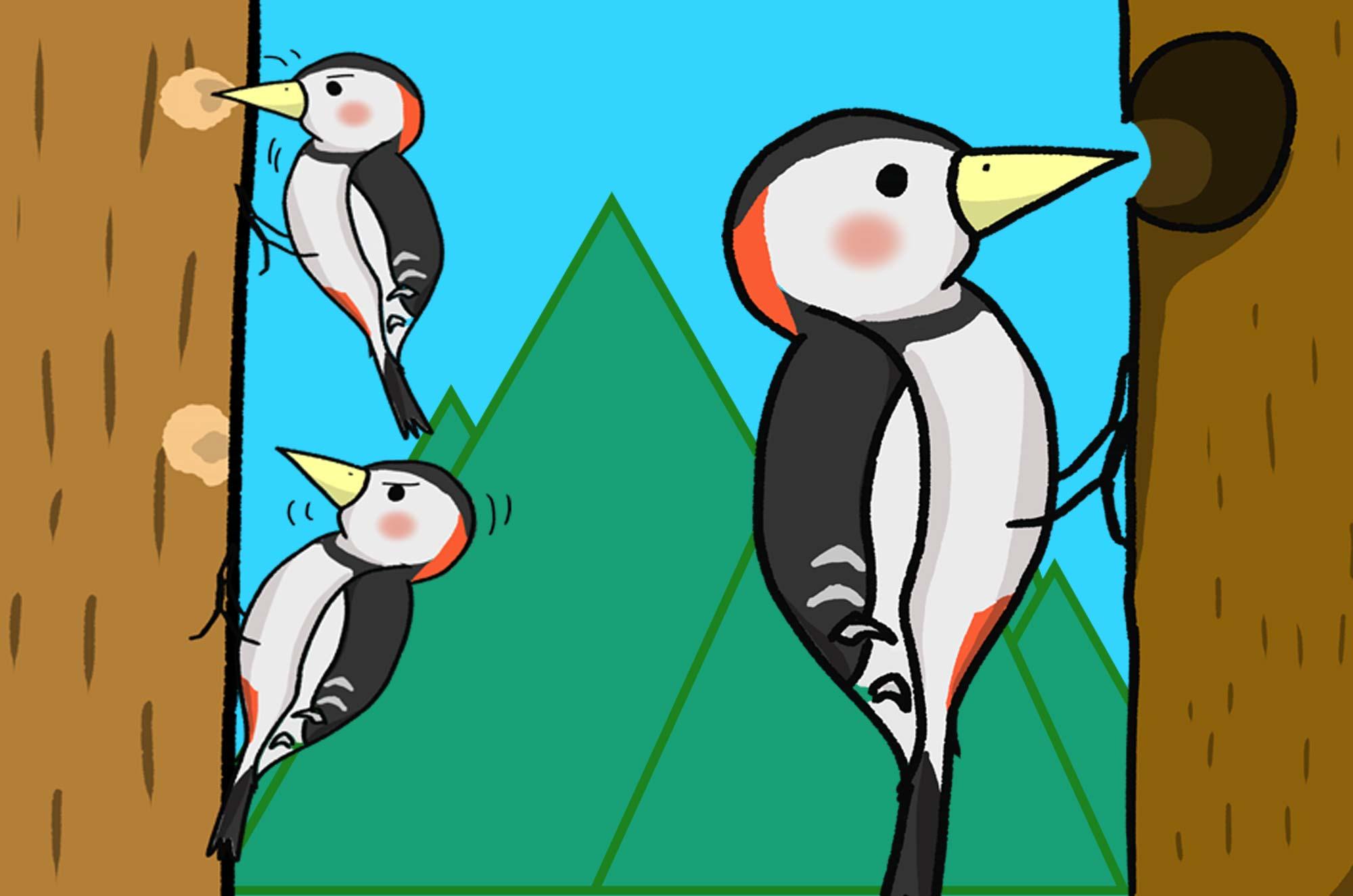 可愛いキツツキのイラスト - 突っつきまくる鳥の面白素材