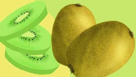 キウイイラスト - かわいいキウイフルーツ無料素材集