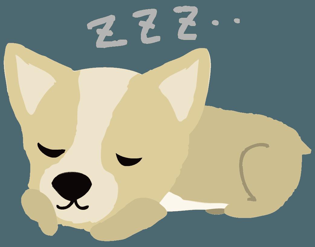寝ているコーギーイラスト