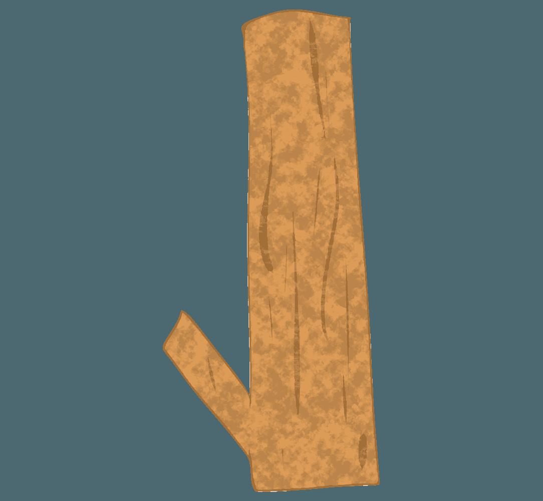 ユーカリの木イラスト