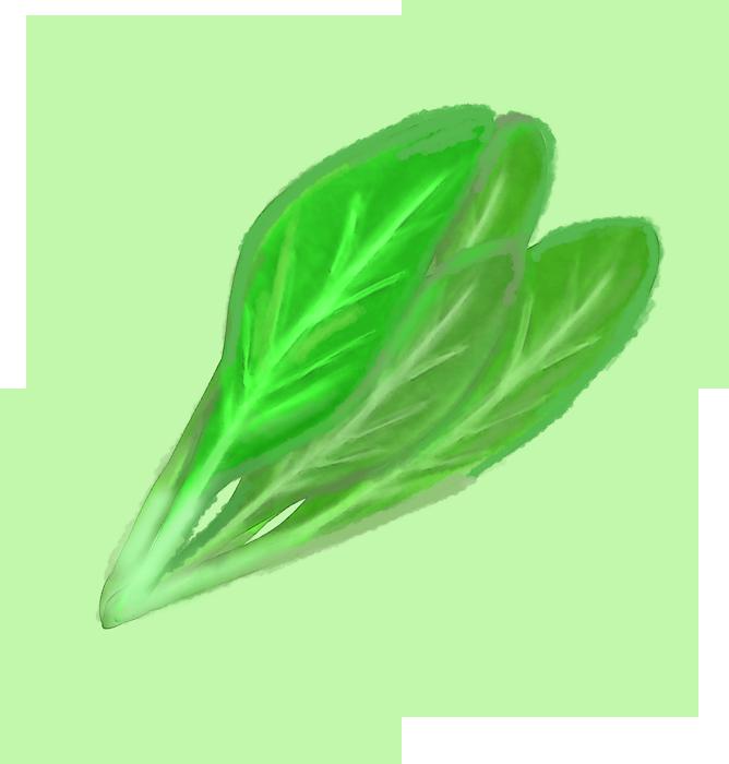 優しいクレヨンタッチの小松菜のイラスト