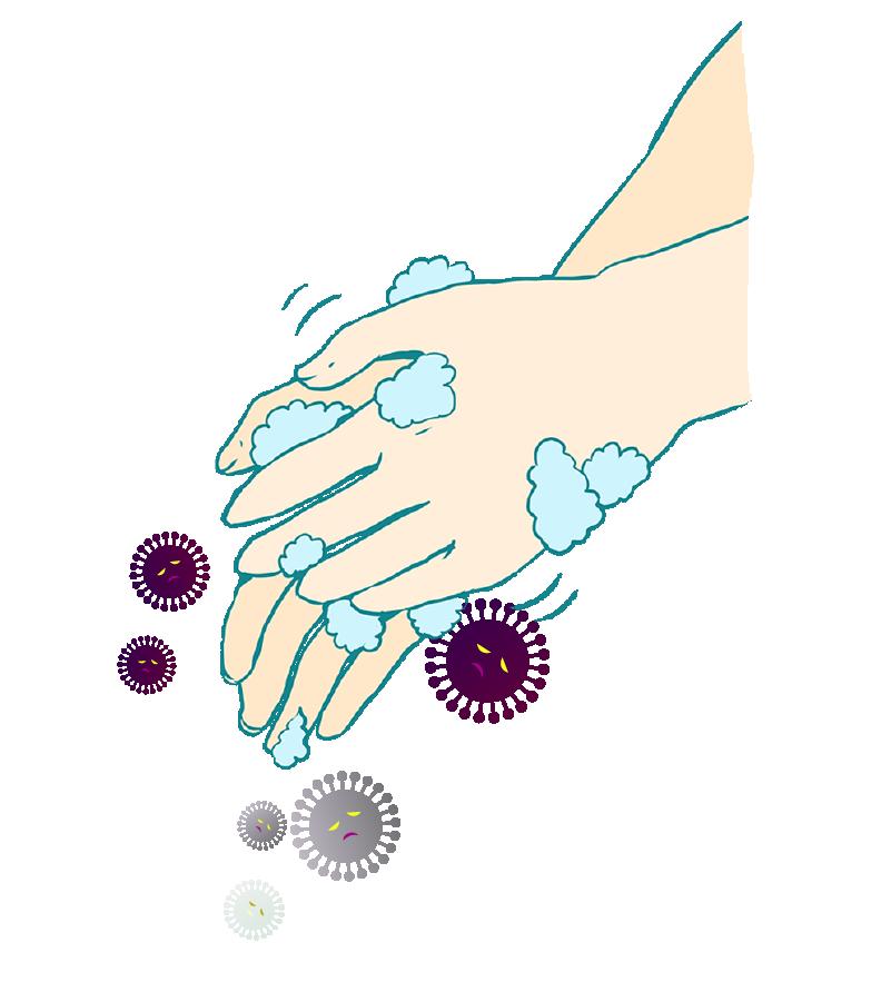 手洗いで死滅するコロナウイルスのイラスト