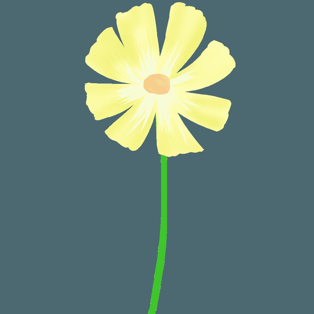 水彩コスモ黄色スイラスト