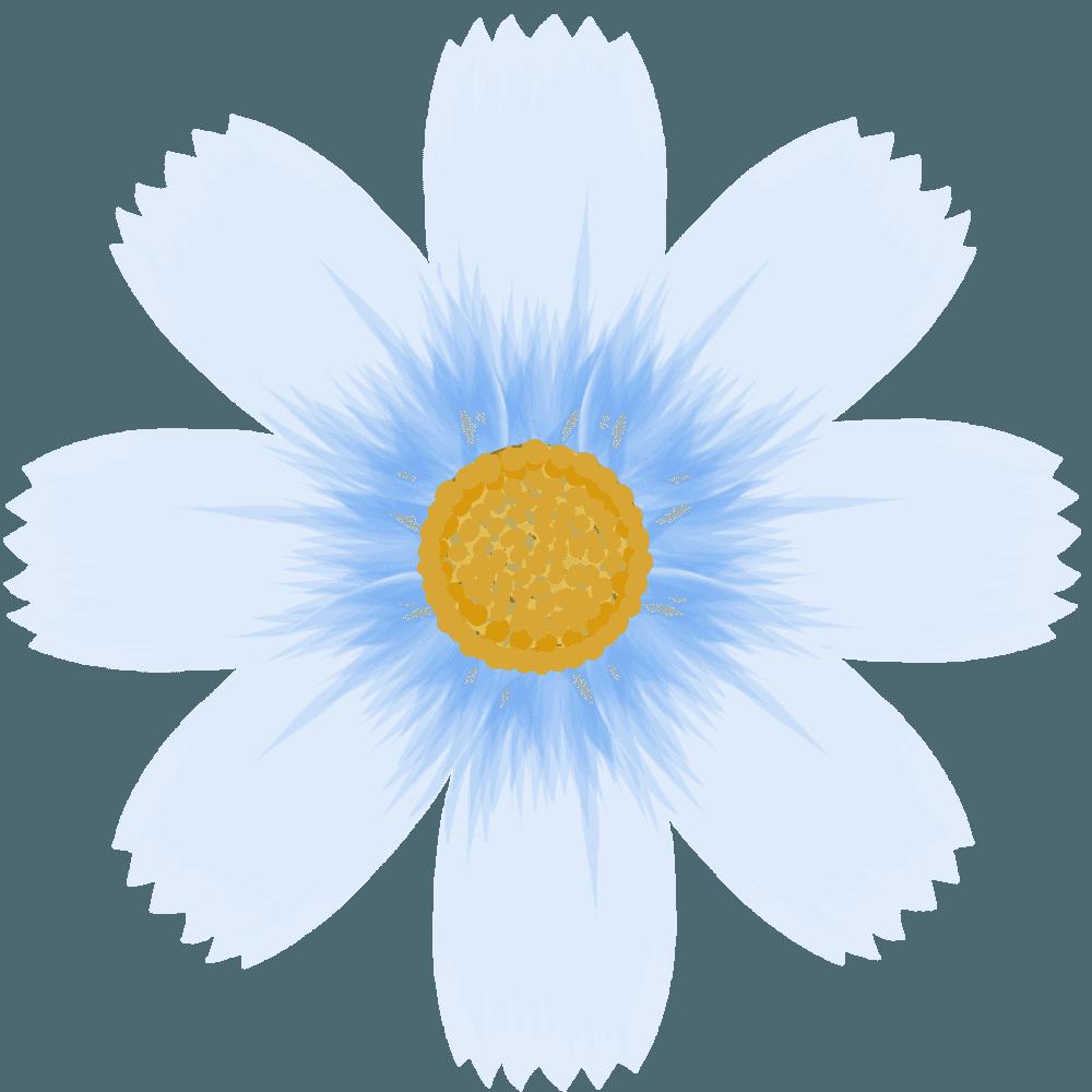 薄い青のコスモスの花のイラスト