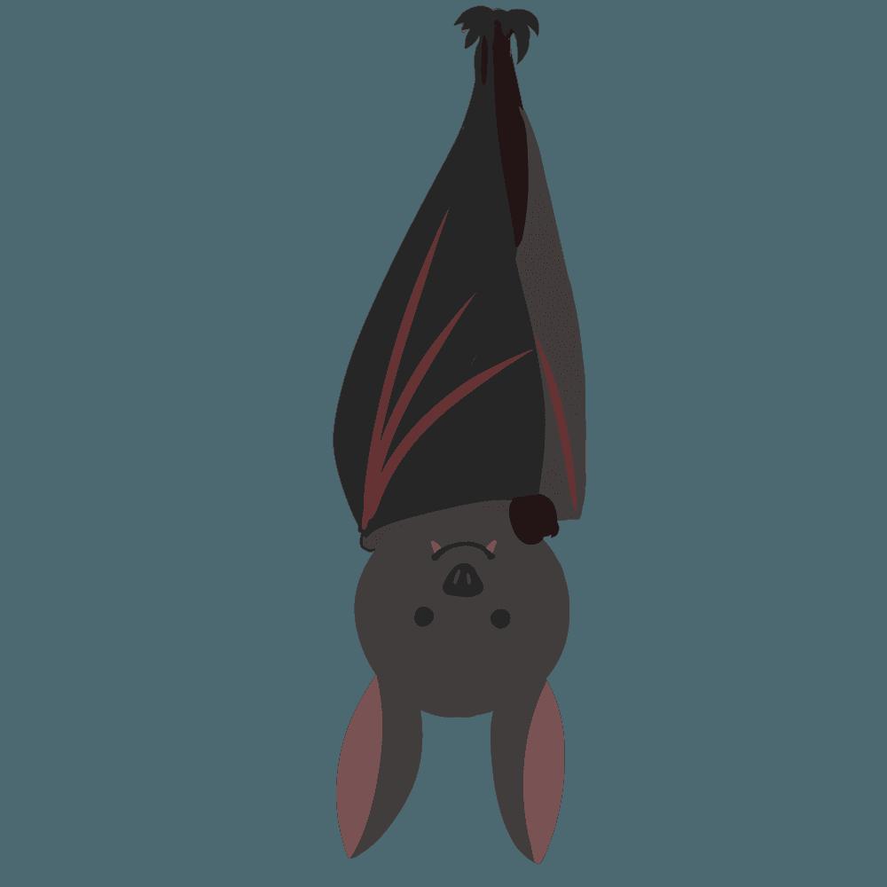 ぶら下がるコウモリのイラスト