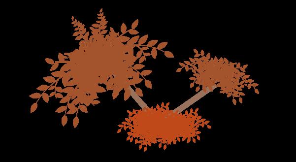 紅葉の枝のイラスト6
