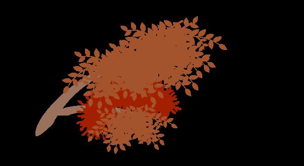 紅葉の枝のイラスト7