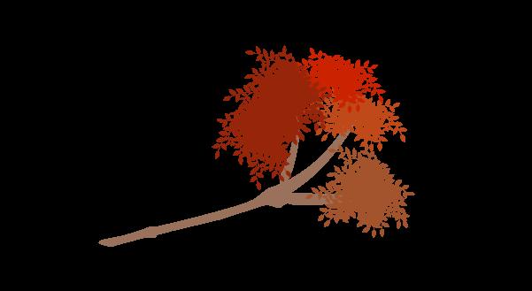 紅葉の枝のイラスト8