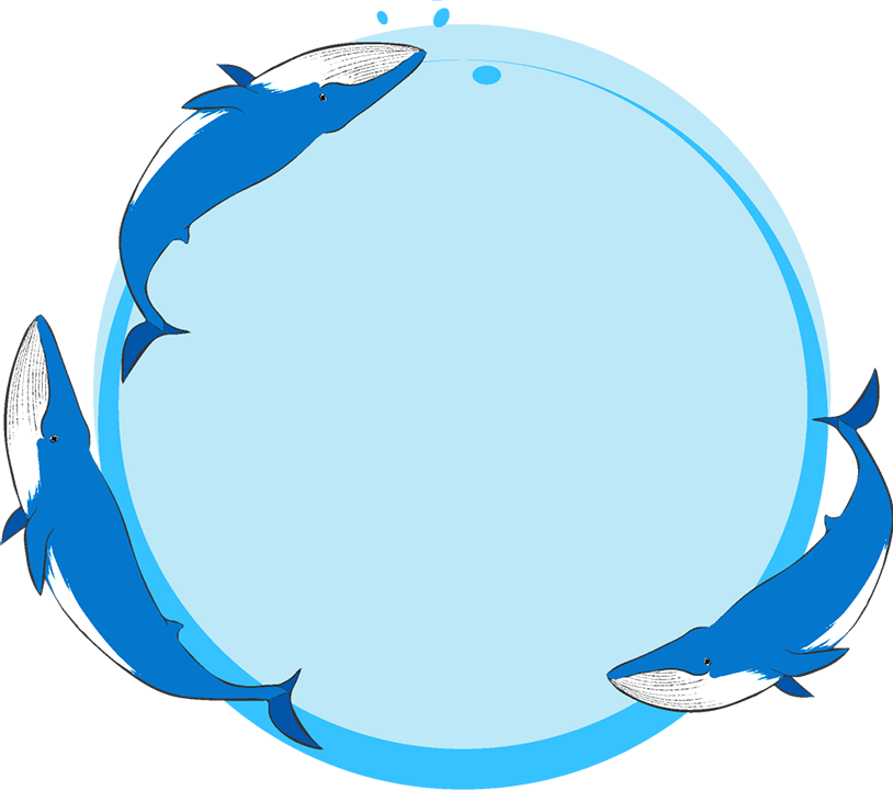 シロナガスクジラ丸フレーム(背景あり814×720)