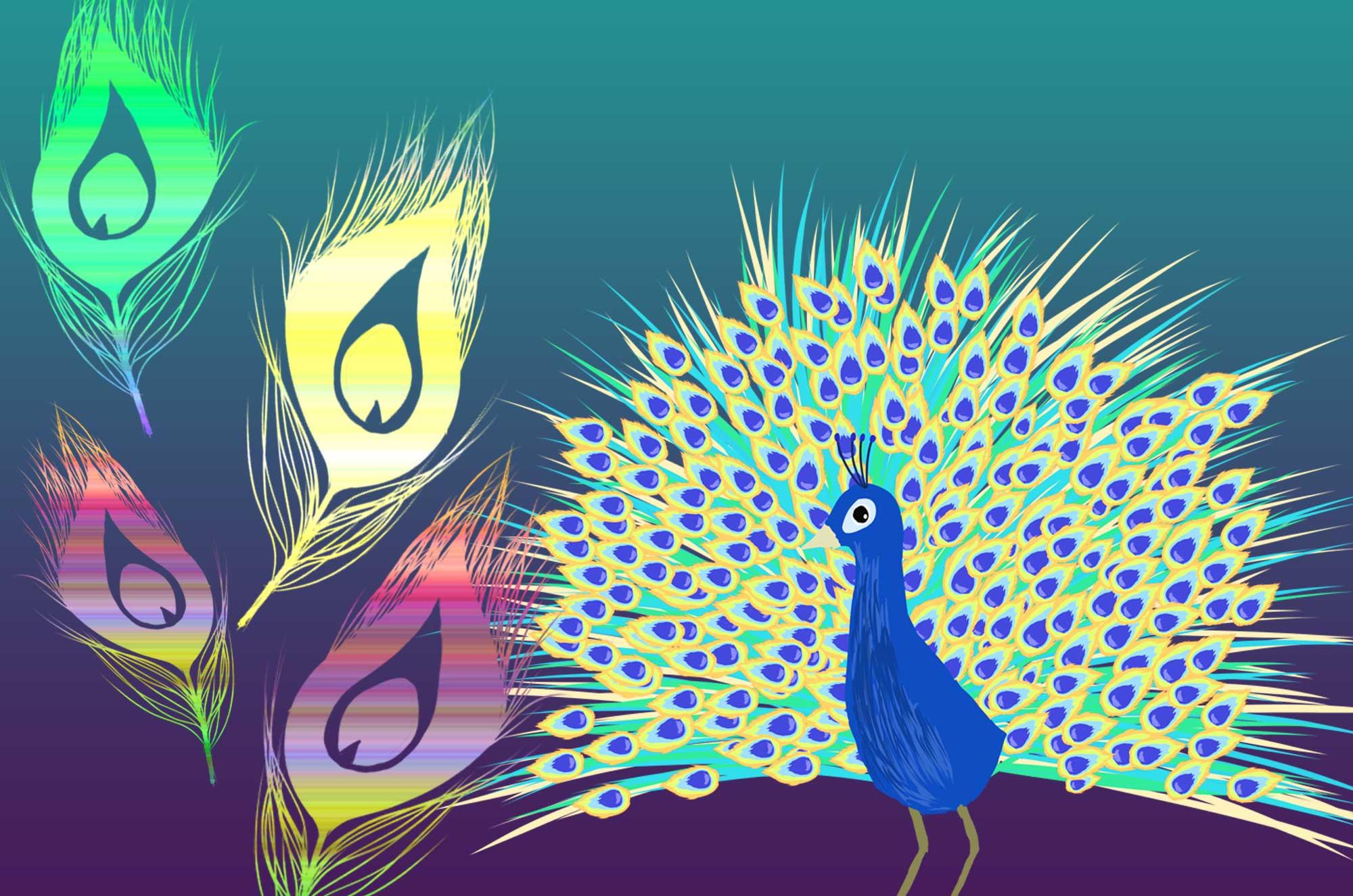 可愛い孔雀と綺麗な羽のシルエットのイラスト無料素材