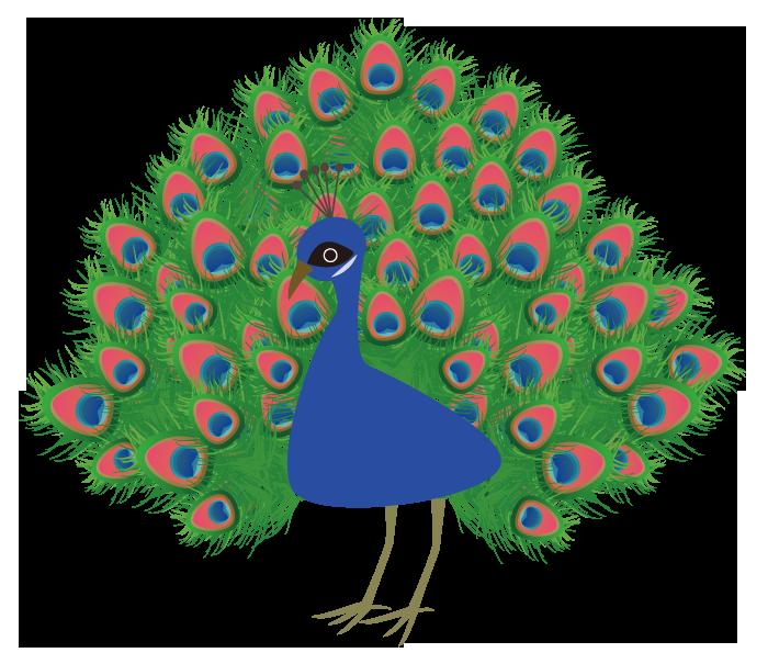 ベクターツールで描いた孔雀