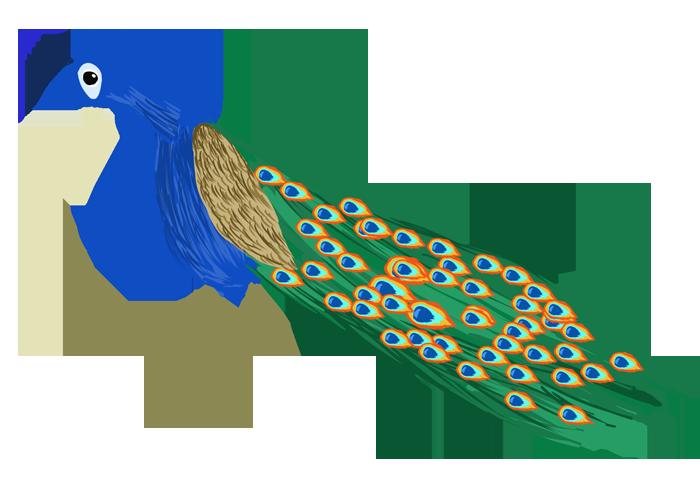 羽を閉じた孔雀のイラスト