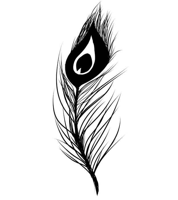 長い孔雀の羽のシルエット