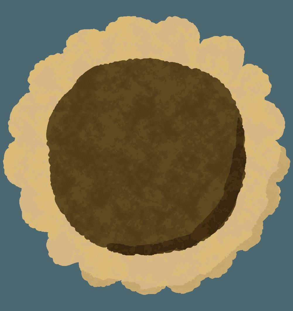 ひまわり型チョコクッキーのイラスト