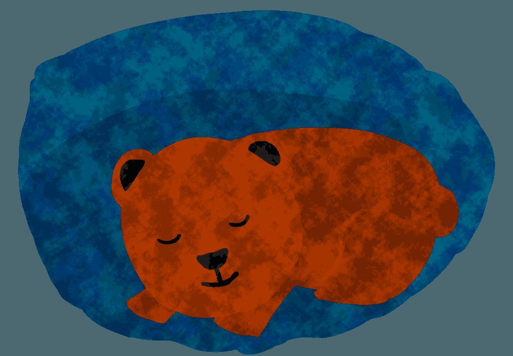 冬眠のくまイラスト