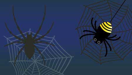 クモと蜘蛛の巣のイラスト - ちょっと怖い無料の昆虫素材