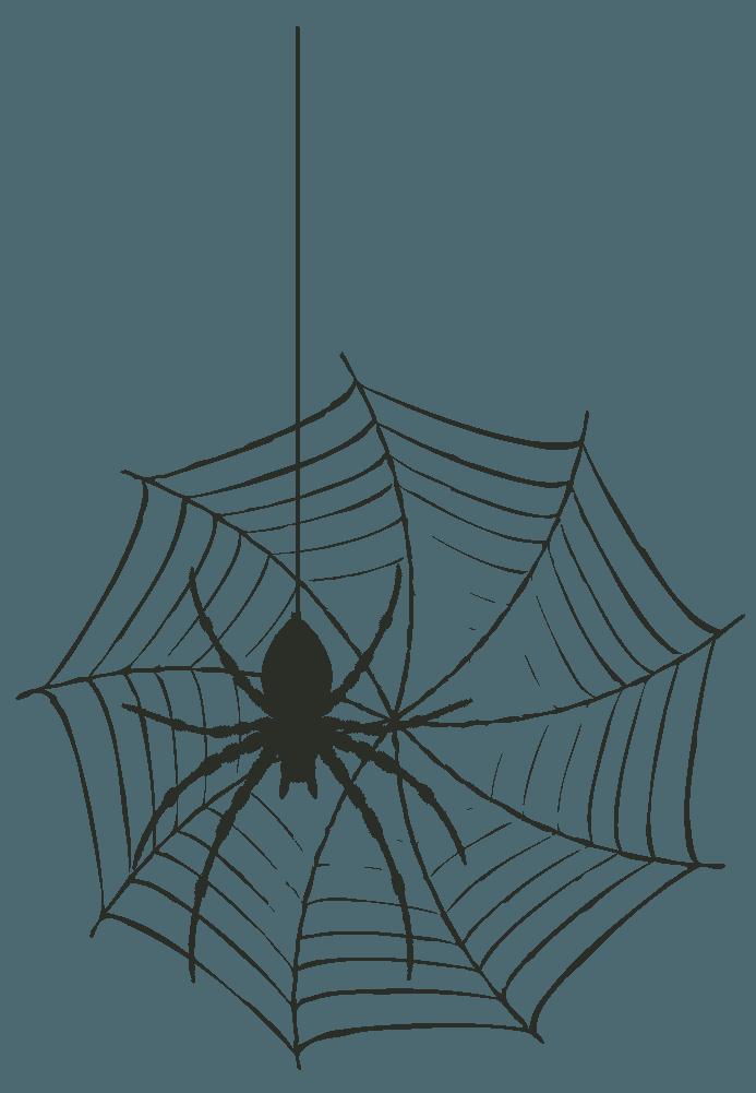 大きなクモと蜘蛛の巣イラスト