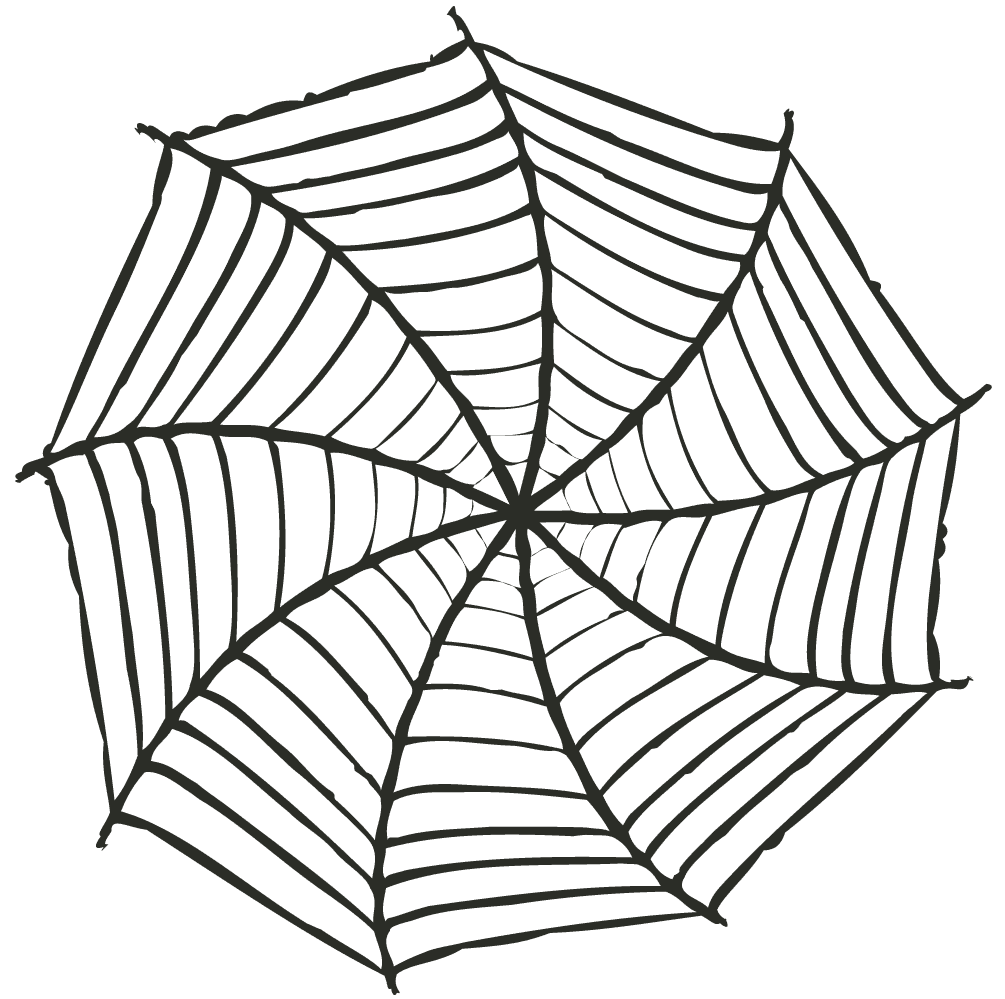 グニャとした蜘蛛の巣イラスト