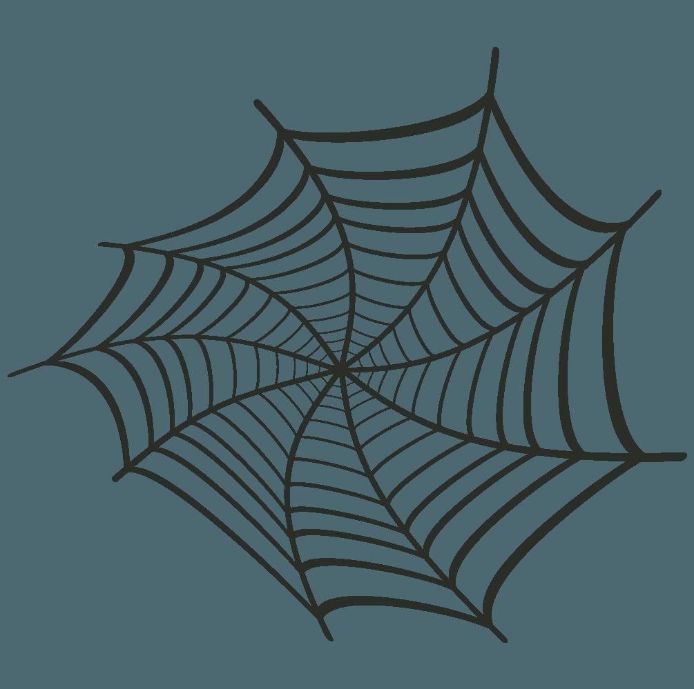 旋回して変形した蜘蛛イラスト