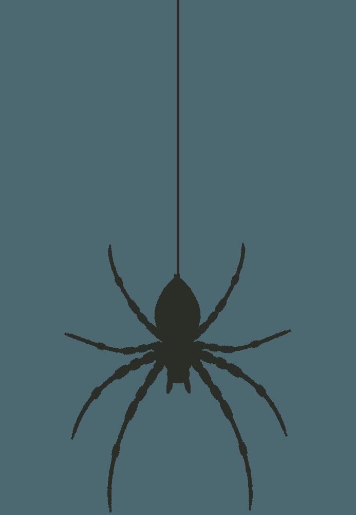 大きな蜘蛛のシルエットイラスト