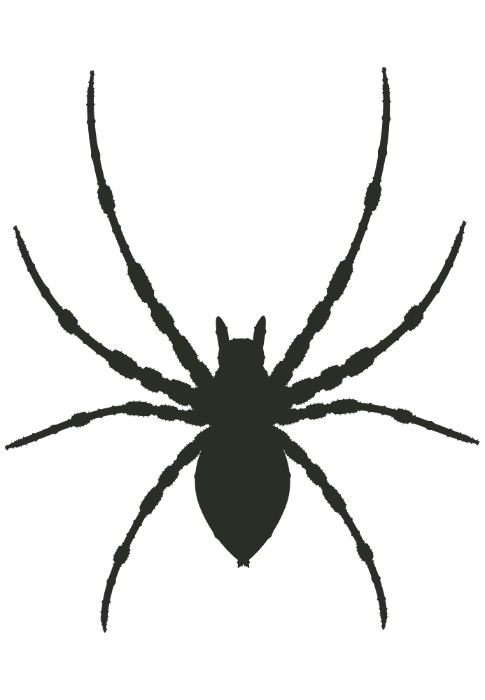 足の長いクモのシルエットイラスト