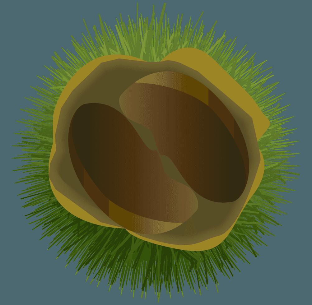 緑色のいがつきの栗イラスト