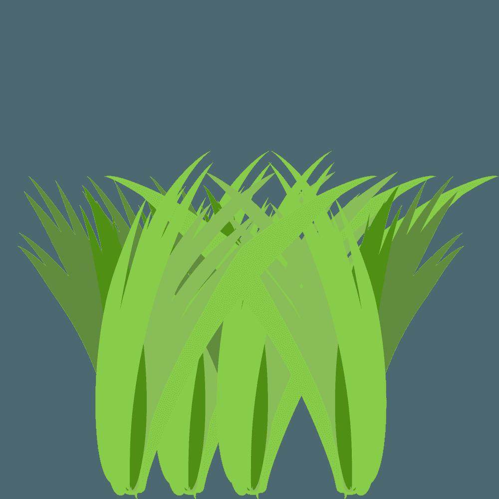 草の束イラスト