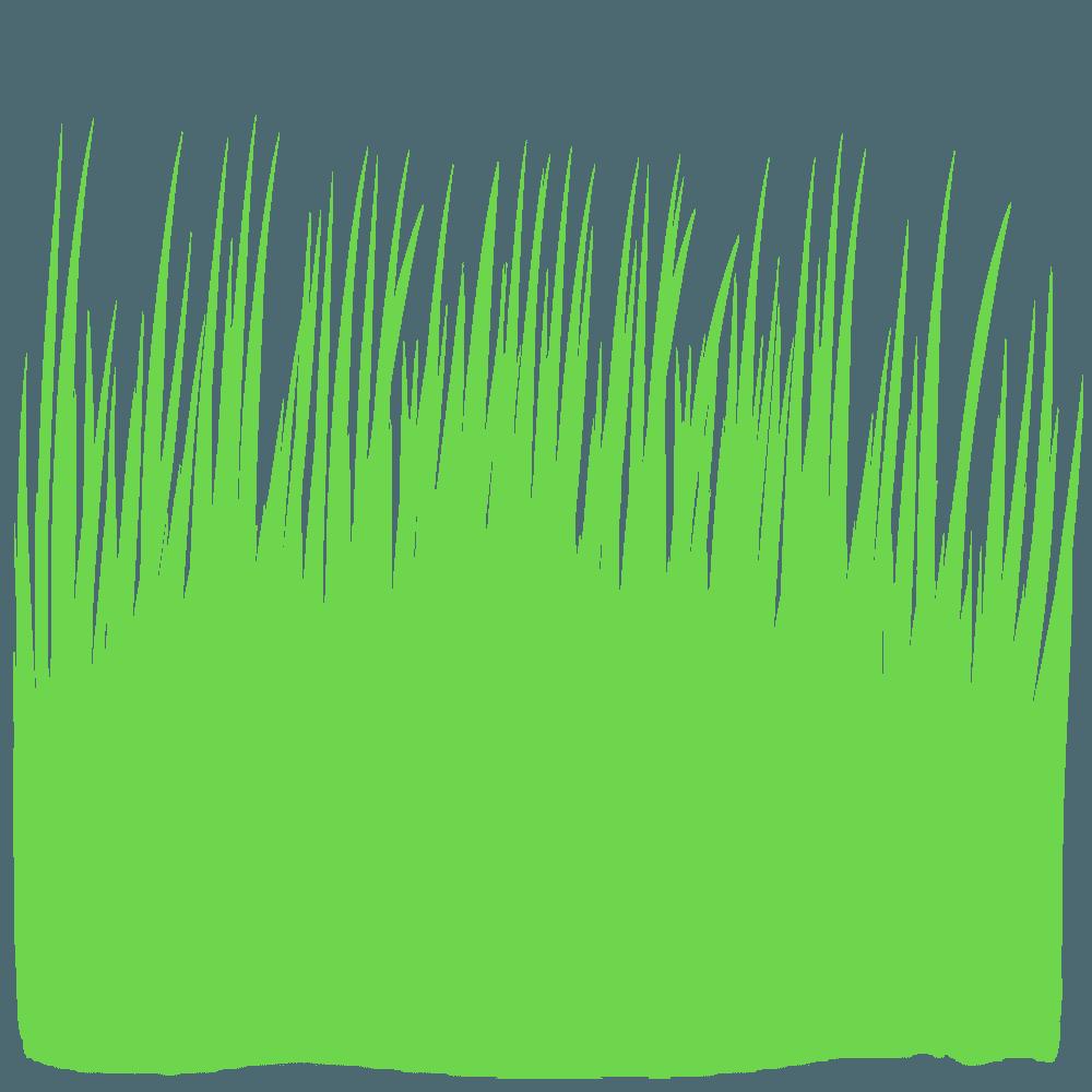 背の高いツンツンした草のイラスト