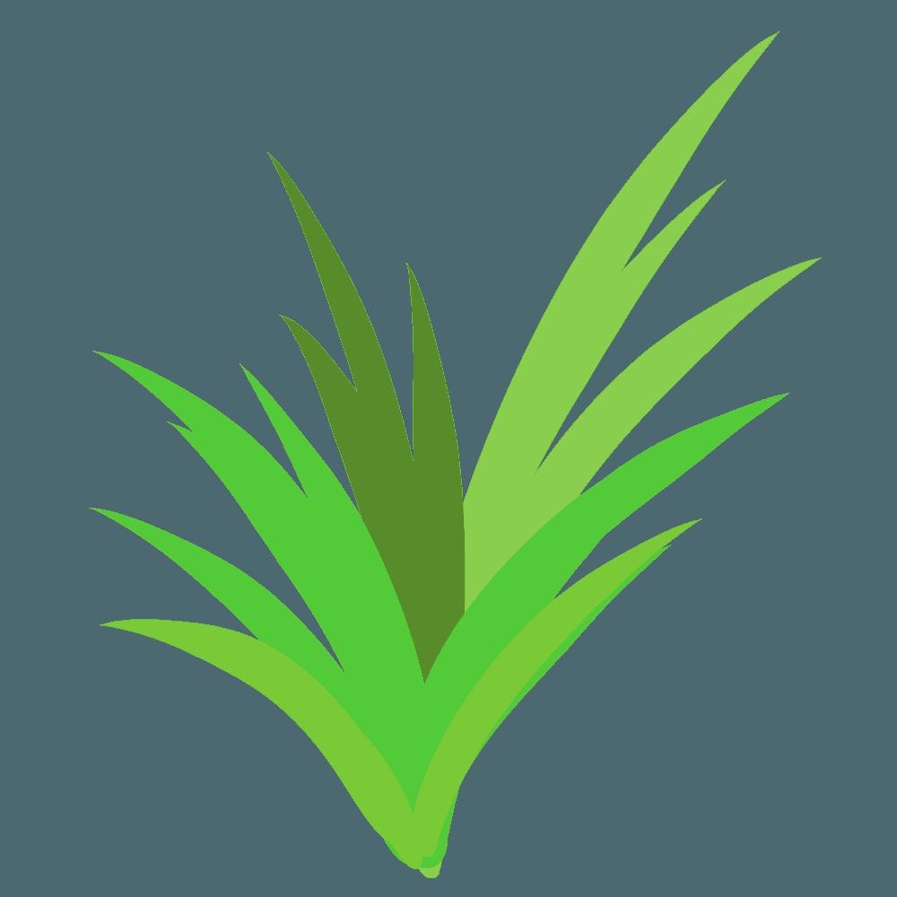 色々な草の束のイラスト