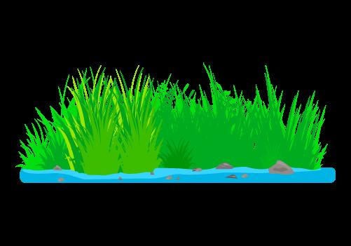 水辺の草むらのイラスト