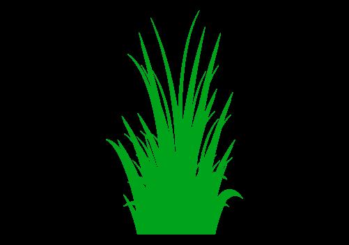 草のイラスト4