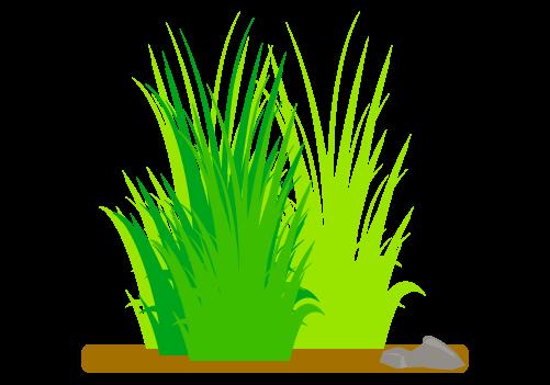 草のイラスト5