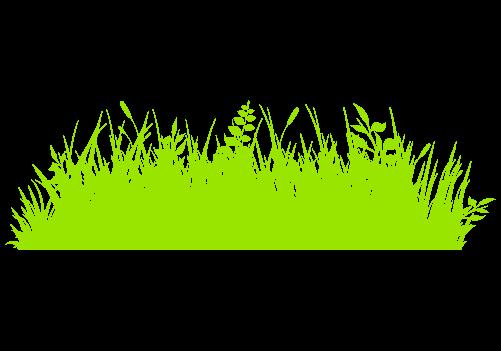 草むらのイラスト1