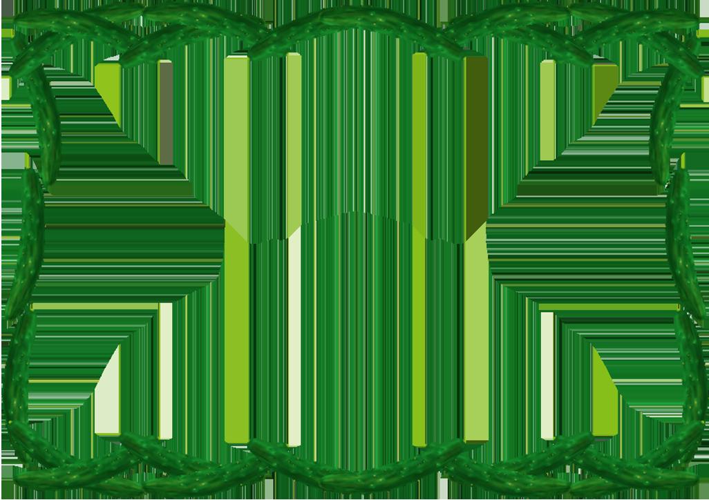 きゅうりフレーム(背景なし1026×724)