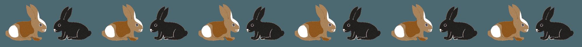ぶち模様と黒ウサギのキュートなイラストライン