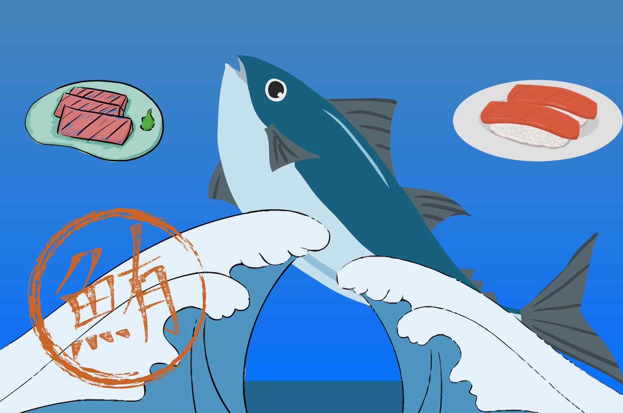 マグロのイラスト - 新鮮な赤みにトロお魚の無料素材