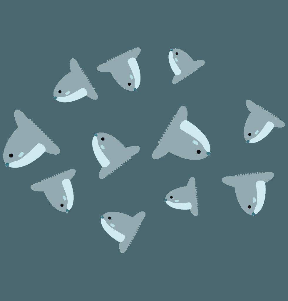 マンボウの稚魚のイラスト