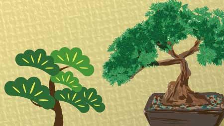 松のイラスト - 盆栽・和や縁起物のイメージフリー素材