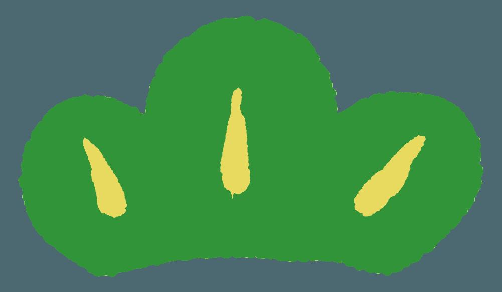 手描きの可愛い松の葉のイラスト