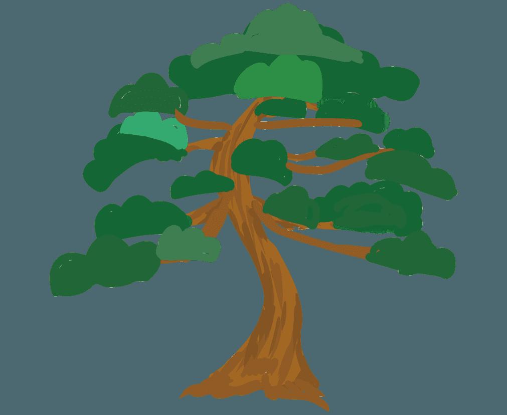 シンプルな松のイラスト
