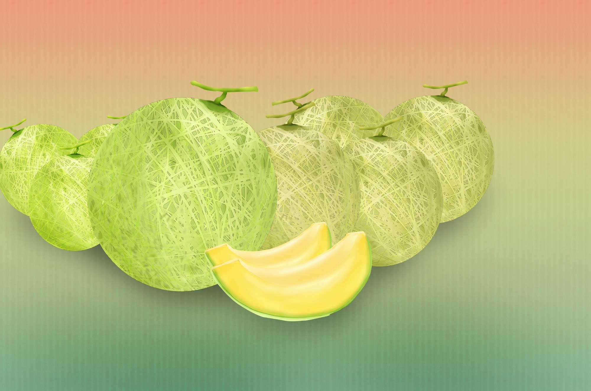 メロンイラスト 無料でダウンロード可能な果物素材 チコデザ