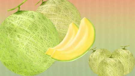 メロンイラスト - 無料でダウンロード可能な果物素材★