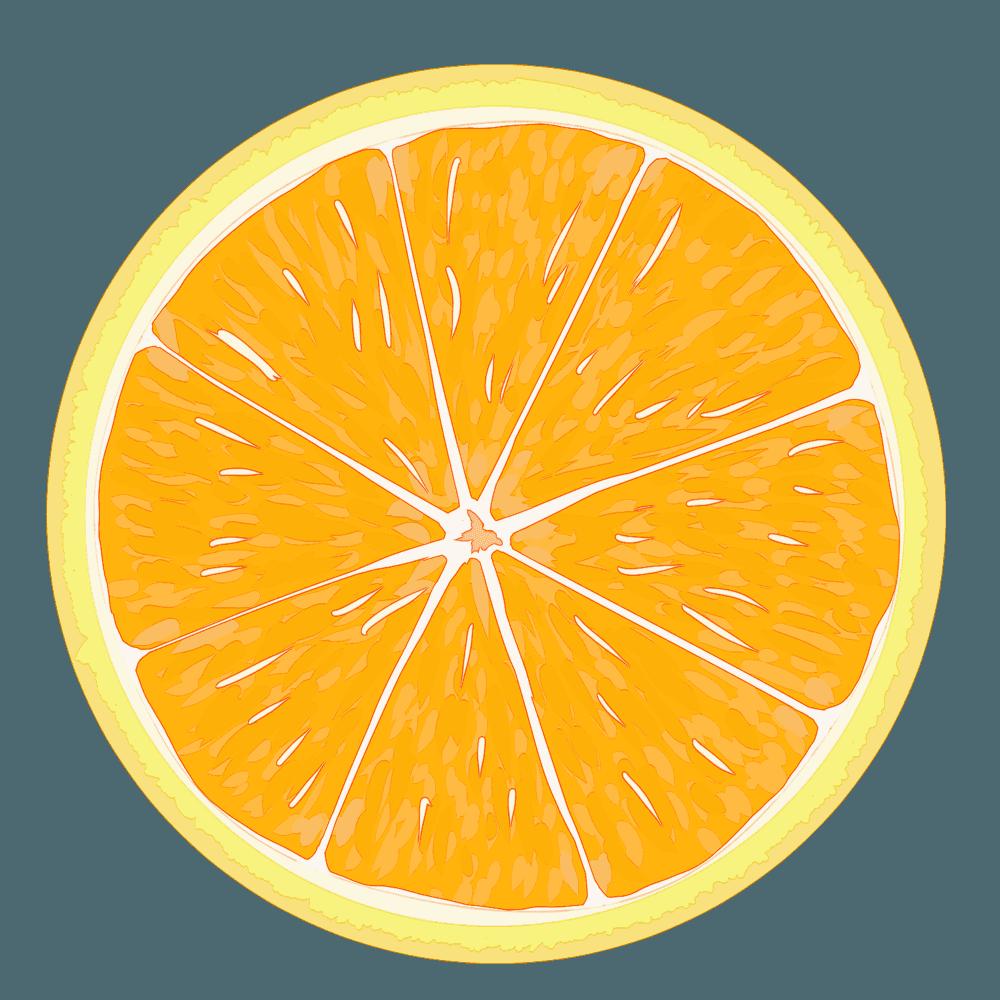 黄色いみかんの輪切りのイラスト