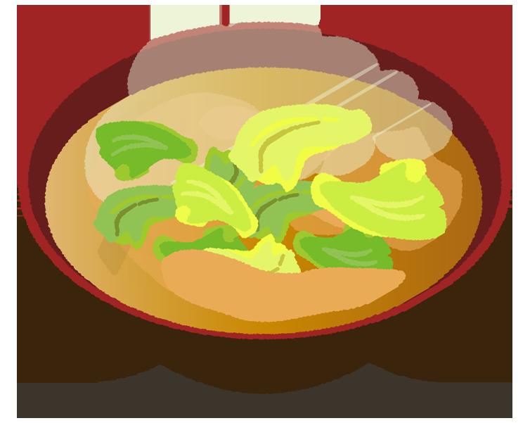 キャベツの味噌汁のイラスト