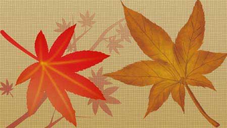 もみじイラスト - 無料で使える秋の植物フリー素材集