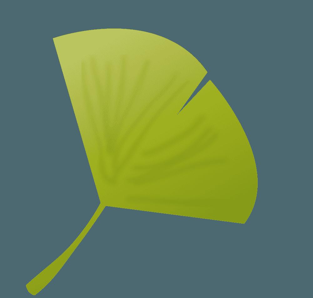 イチョウの葉イラスト