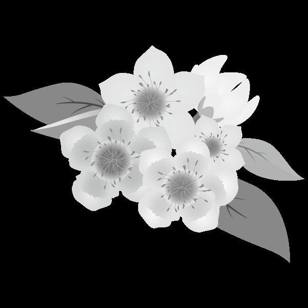 桃の花(白黒)のイラスト