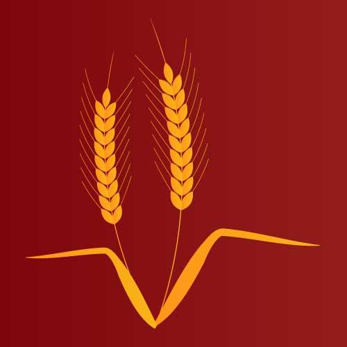 麦のベクターイラスト